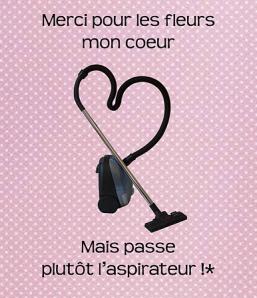 fleurs/aspirateur